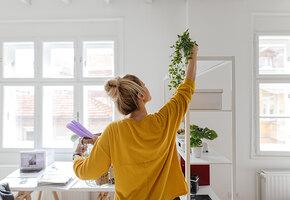 Все это используют: 7 вещей, которые помогут победить вечный бардак дома