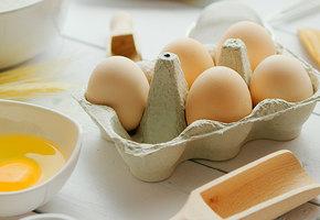 5 рецептов с варёными яйцами: щи, рулет, салаты и яйца по-мароккански