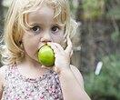 Дочь подала всуд наотца — яростного сторонника ЗОЖ. Он запретил ей толстеть