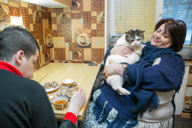 Кира, Даня и кот