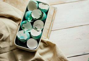 Почему нельзя выбрасывать скорлупу пасхальных яиц?