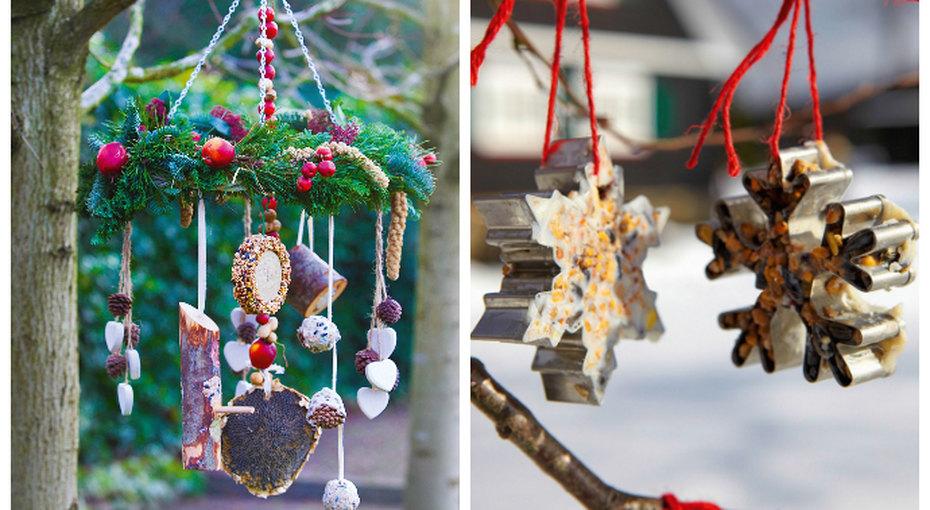 Декорации длязимы, птиц исебя, любимых