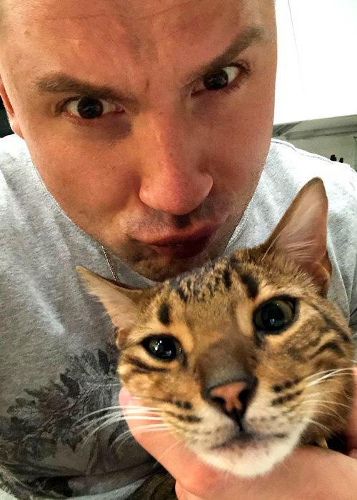 сергей лазарев кот фото