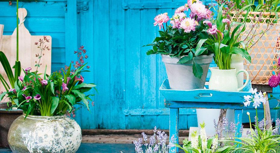Как создать идеальный цветник надаче