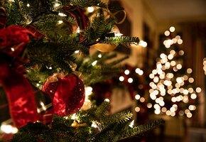 Свечи, гирлянды, красота: что купить для новогоднего декора онлайн?