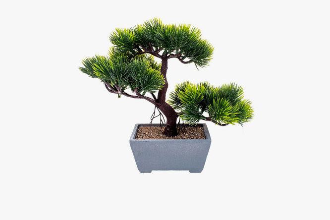 Домовой, Растение искусственное Бансай,зеленый, кашпо, 669 руб. по скидке