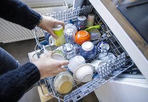 Как уничтожить бактерии и плесень в стиральной и посудомоечной машине?
