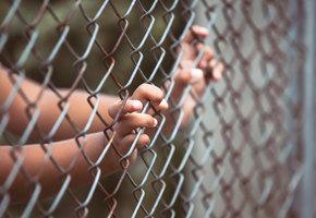В Краснодарском крае женщина посадила в клетку четырехлетнюю дочь с ДЦП