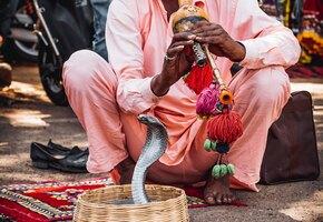 Укус змеи, лихорадка и коронавирус: мужчина рассказал о худшей поездке в жизни