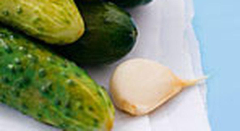 Рецепты солений: 5 рецептов согурцами