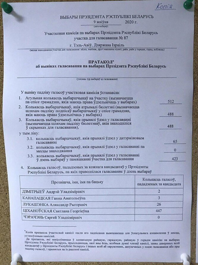 Протокол голосования белоруссия, беларусь голосование