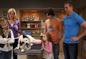 8 лучших сериалов, где в главной роли животные