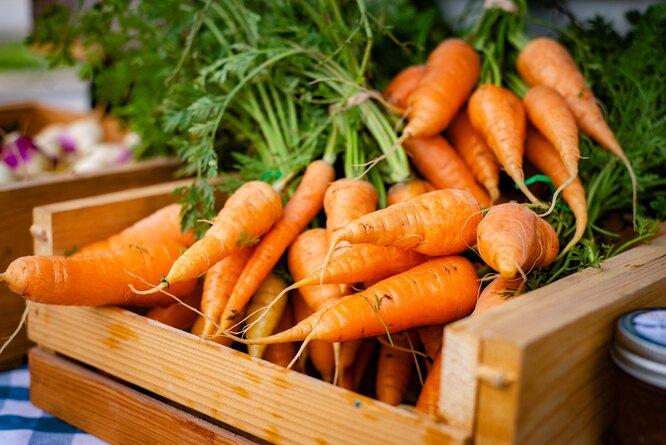 Морковь, продукты с витамином A