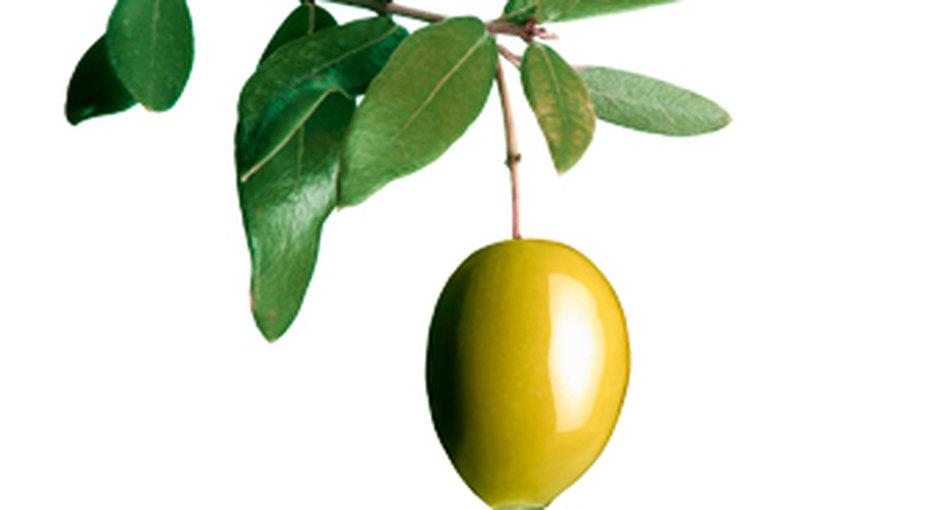 5 рецептов с... оливковым маслом