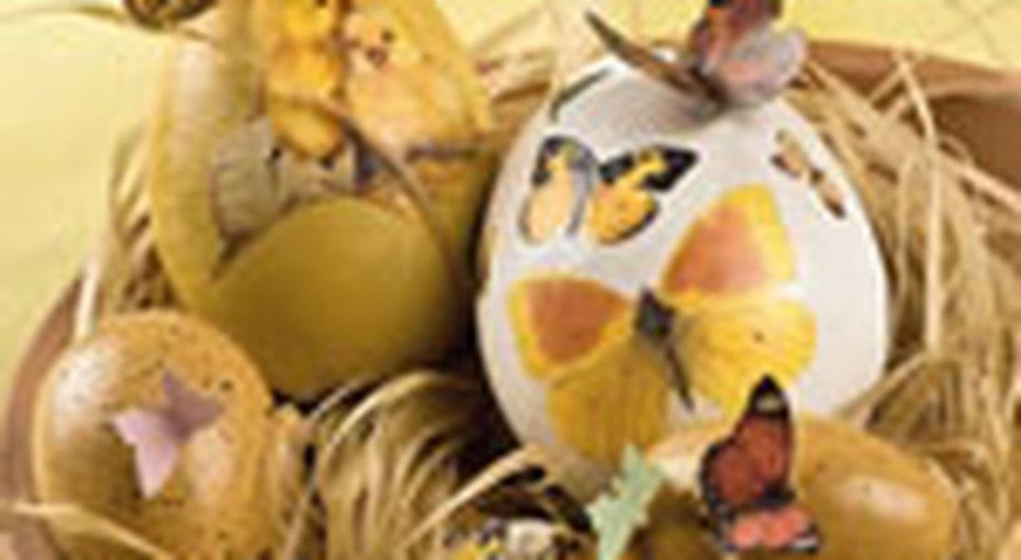 Наши идеи: яичная скорлупа