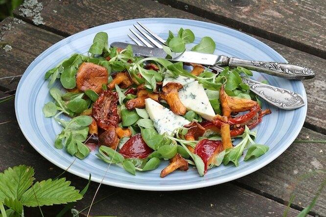 Теплый салат с лисичками: хит грибного сезона