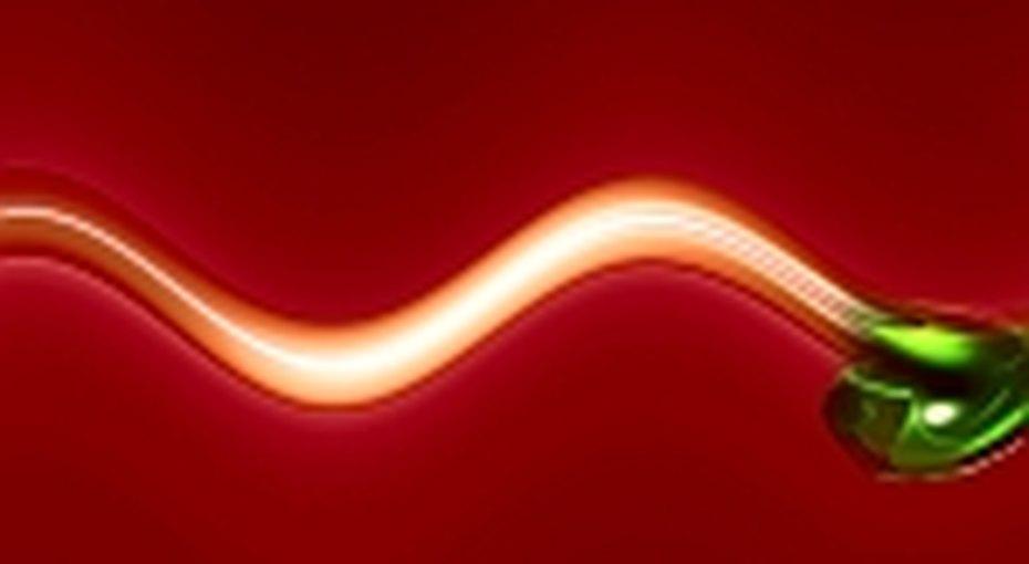 Сперматозоиды изпробирки