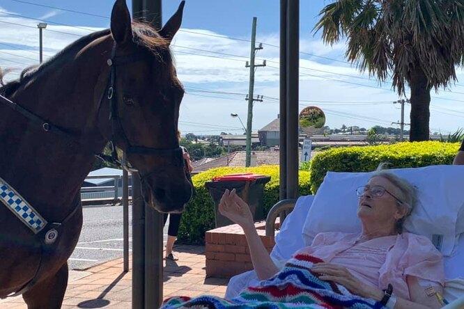 Бесценный подарок: конная полиция выполнила последнее желание пациентки хосписа