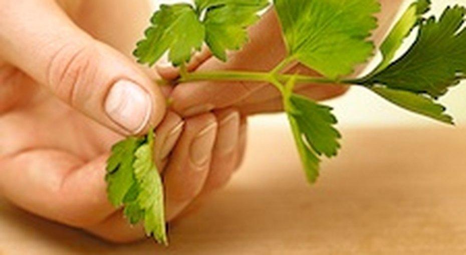 Как нарезать зелень