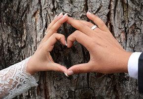 Вы покраснели: 27 лет супружества — как отмечать год «красного дерева»
