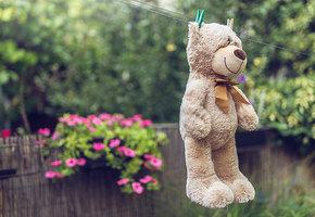 Как почистить мягкие игрушки без «химии»: 3 секрета заботливой мамы