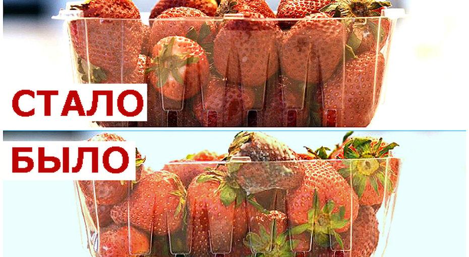 Как сделать так, чтобы спелые ягоды клубники хранились две недели?