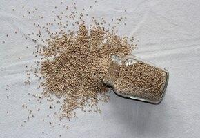 Маленькие и полезные: 5 фактов о семенах льна