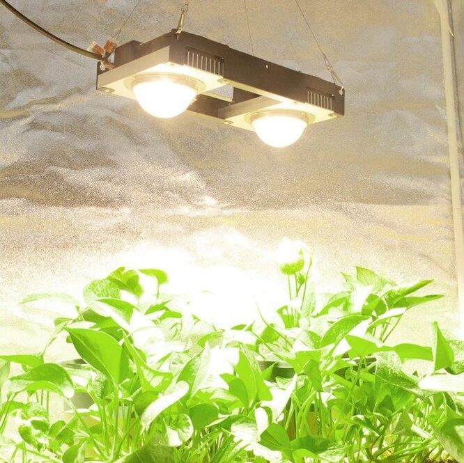 Светодиодный Grow светильник, 5 176 руб. 23 к. - 11 901 руб. 64 к.