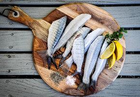 5 простых рецептов с рыбой: пирог, суп, закуска и запеченная
