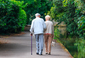 Прогулки для пожилых: план на 4 недели, который изменит все