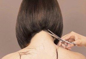 10 правил удачной стрижки волос