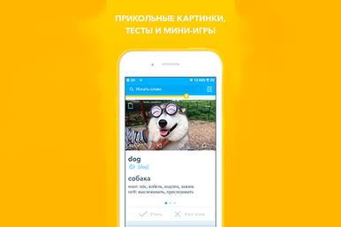Upmind – уникальное приложение дляизучения иностранных языков
