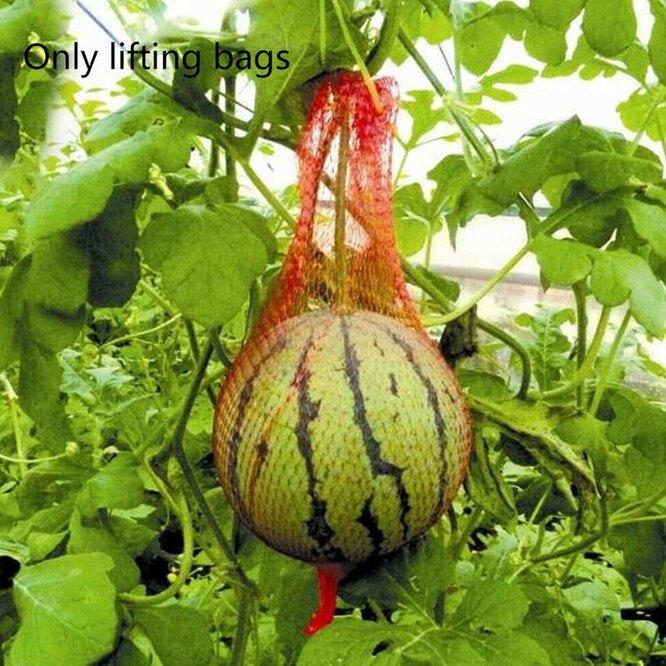 Сетка для подвешивания растений в теплице, Aliexpress