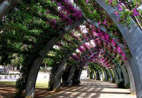 15 самых красивых «цветочных» улиц в мире
