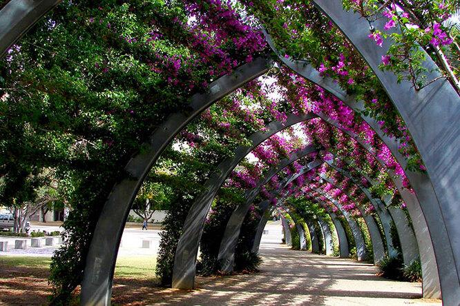 15 самых красивых «цветочных» улиц вмире