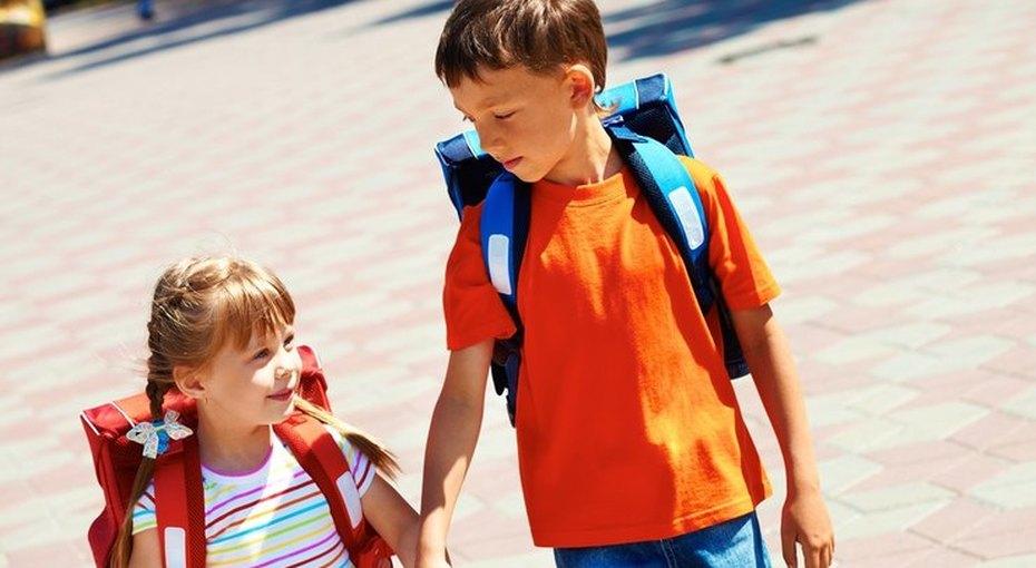 Когда лучше отдавать ребёнка вшколу — 6,5 или 7,5 лет?