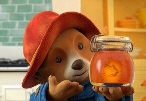 Домашний апельсиновый мармелад по рецепту медвежонка Паддингтона