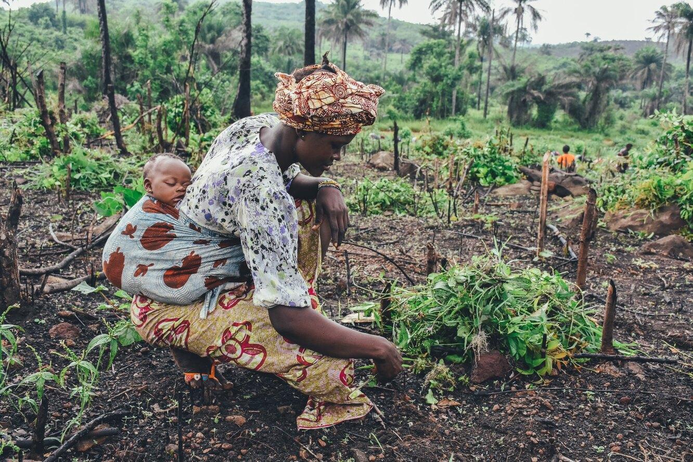 африка, женщина с ребенком, бедность, африканские плантации