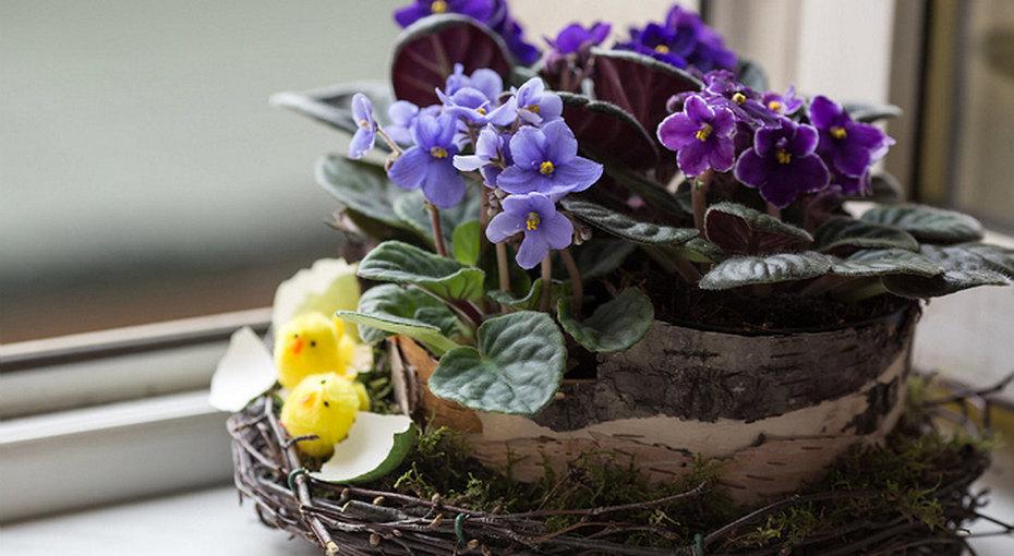 Пасхальное гнездо - отличный подарок своими руками!
