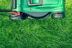 Восстанавливаем газон: 5 самых распространенных проблем иих решение