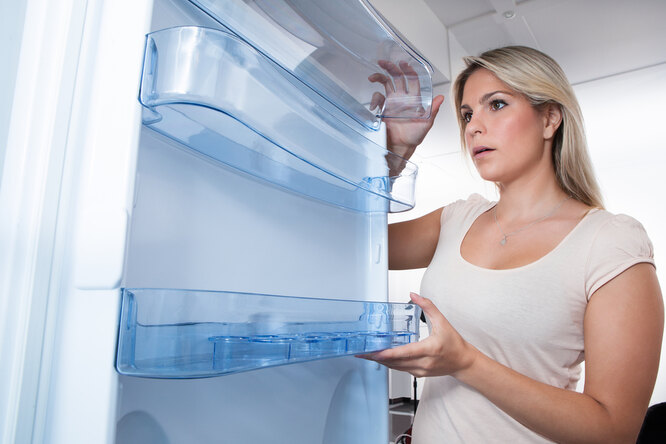Всё, что вам нужно знать обочистке холодильника