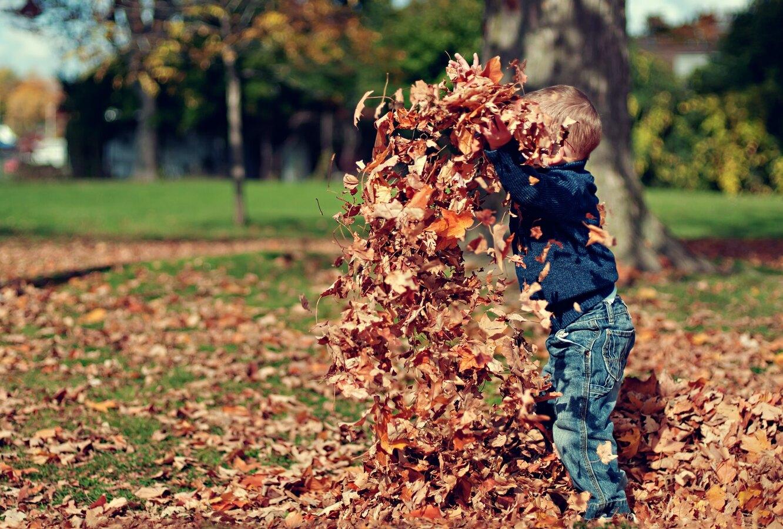 ребенок, осень, игра, активность