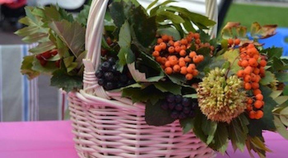 «Домашний Очаг» наюбилее Фестиваля семьи иребенка «Девятый месяц» вЦарицыно