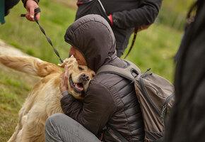 Приютский пес бросился обнимать случайного посетителя. И тот не смог уехать один
