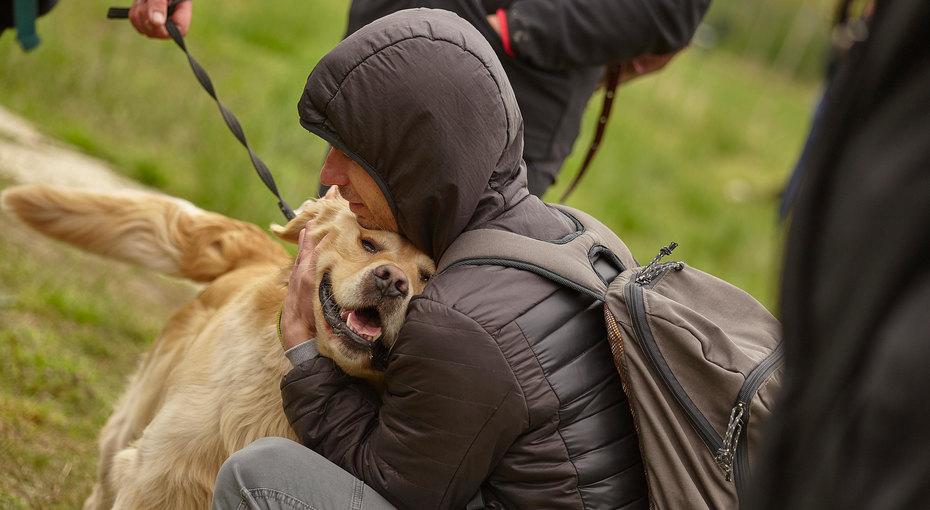 Приютский пес бросился обнимать случайного посетителя. Итот несмог уехать один