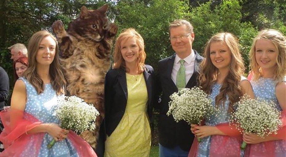 Женщина заменила бывшего парня сестры котом навсех семейных фото