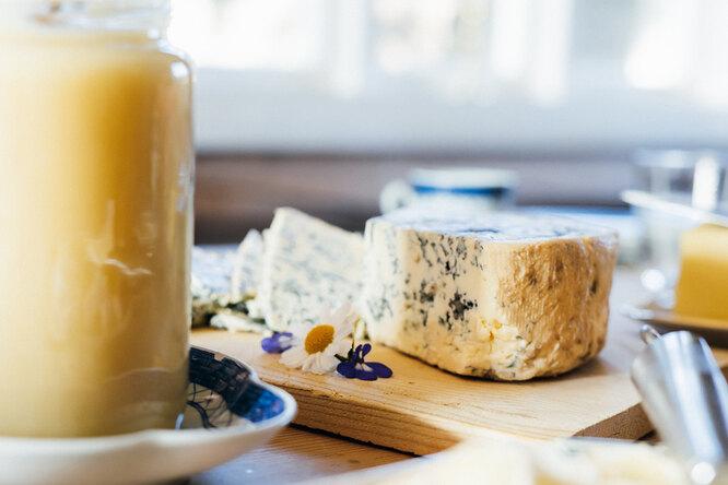 Йогурт и сыр