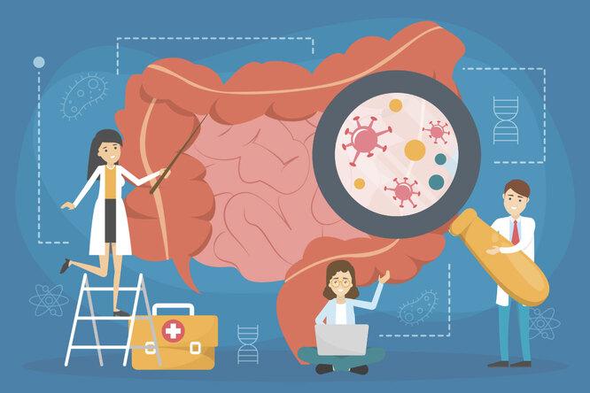 Диабет, рассеянный склероз, болезни сердца: болезни, начинающиеся вкишечнике