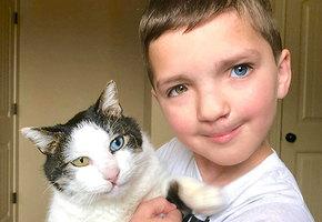 Мальчик, над которым смеялись из-за разного цвета глаз, нашел кошку с такой же особенностью
