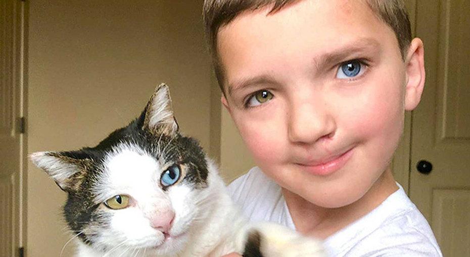Мальчик, надкоторым смеялись из-за разного цвета глаз, нашел кошку стакой же особенностью